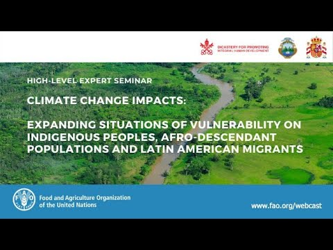 High-level seminar on the impacts of Climate change on Indigenous Peoples, Afro-descendants