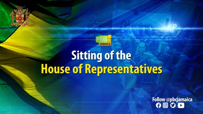 Sitting of the House of Representatives – June 22, 2021