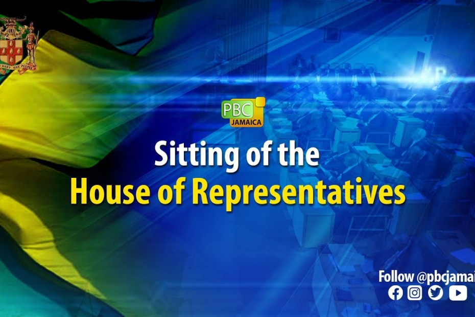 LIVE NOW: Sitting of the House of Representatives – June 22, 2021