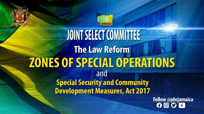 JSC on The Law Reform ZOSO, Special Security and Community Development Measures – July 22, 2021