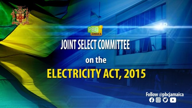 """Joint select committee on the """"Electricity act,2015""""- July 28,2021"""