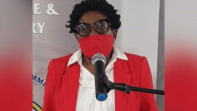 Janet Silvera intensifies calls to PM over CRH crisis| The story behind Silvera's glory