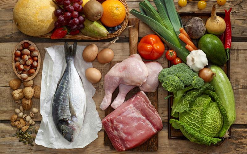 rich protein food