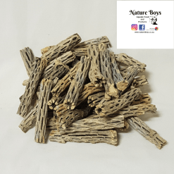 Nature Boys Cholla Wood