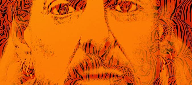 Tiger King: A few important things about mediation we learned from Joe Exotic