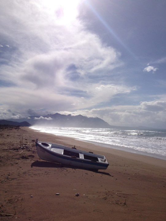 031 'Windswept' - Greece
