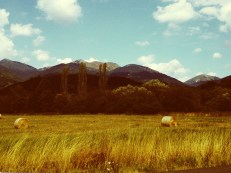 Saw Slovakian countryside