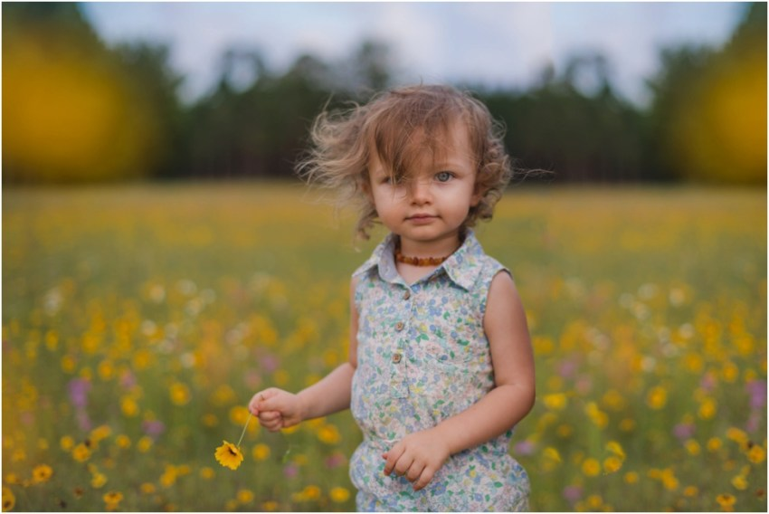 beautiful toddler in the flower field| jacksonville children photographer