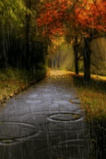 Rainy Fall Day Wallpaper Compunere O Zi Ploioasă De Toamnă Magia Copilăriei