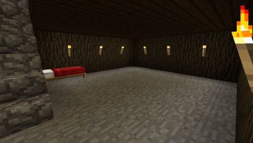 Basement with bed.