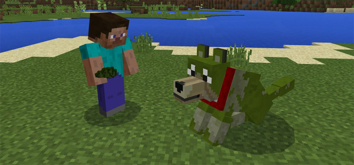 Colorful Mutant Wolves Addon Minecraft PE Mods Amp Addons