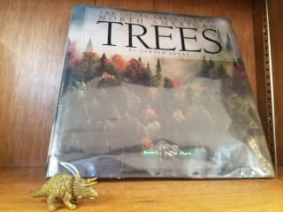 toy triceratops with book titled Trees