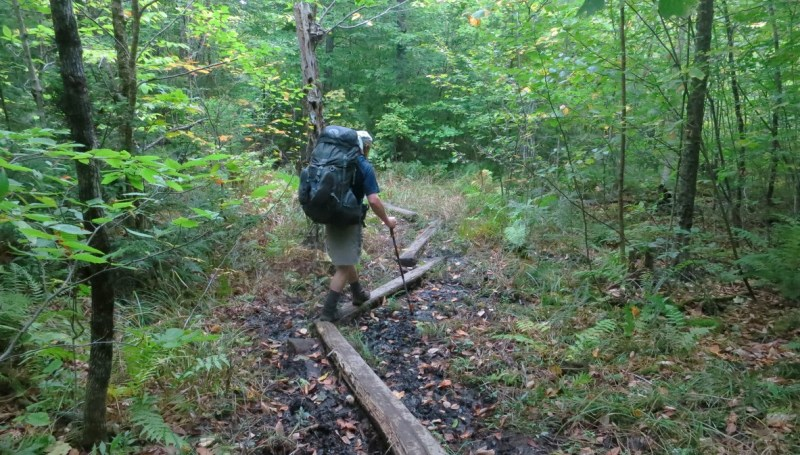 Hiking trail in Maine