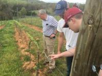 RJ Noblitt With Students Examining Grapevines