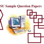 PSU Sample Paper 2