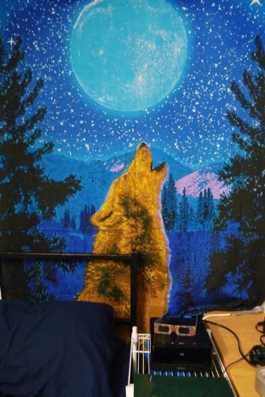Will Lamparelli's room in Jasper Hall. Photo by Leah Cordova.