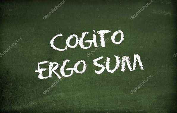 R1m : Cogito Ergo Sum !