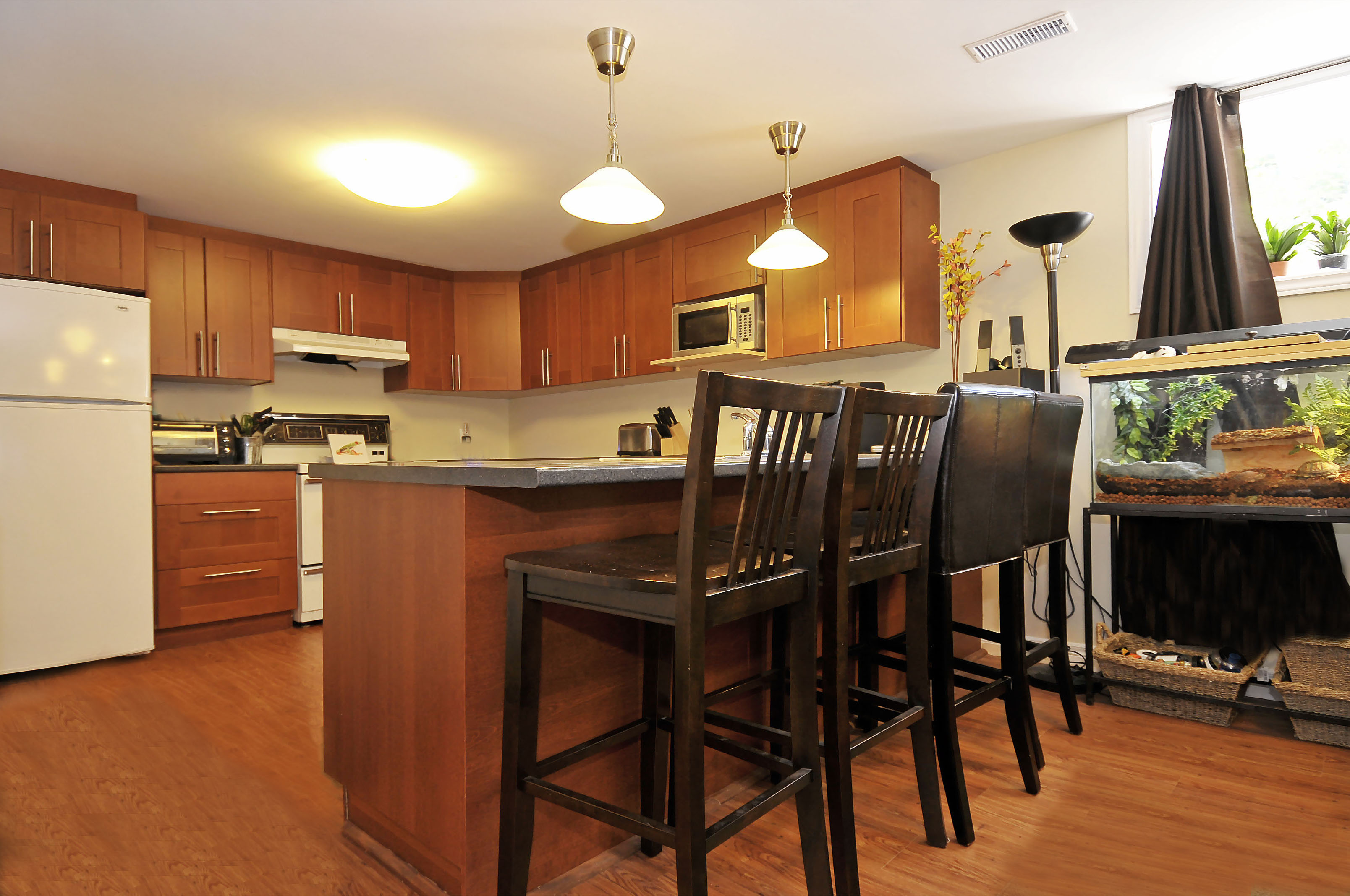 3-1127 Richard Avenue basement breakfast bar