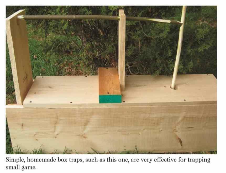 homemade box trap