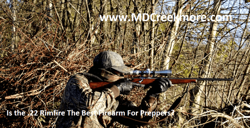 Is the .22 Rimfire The Best Firearm For Preppers?