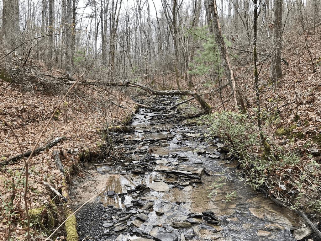 stream on my property