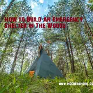 How to Build an Emergency Shelter in The Woods