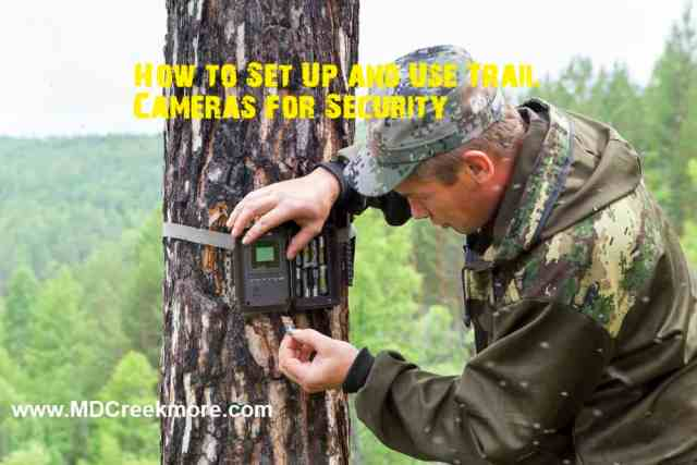 How to Set Up and Use Trail Cameras for Security