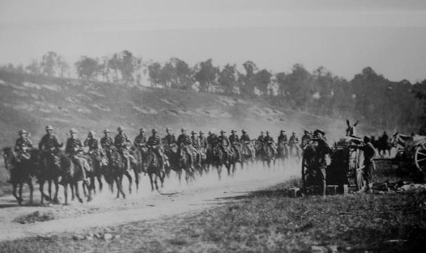 "In the First World War between 136,000 and 169,000 ""Walers"" (the name generally applied to Australia's sturdy horses) were sent overseas for use by the Australian Imperial Force and the British and Indian governments; 6,100 of those horses embarked for Gallipoli. One horse from them all made it back to Australia. - See more at: http://mhhv.org.au/?p=830#sthash.sz6Wgzvu.dpuf"