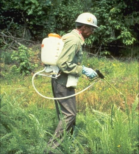 USDA FS Region 8 Archive Spray