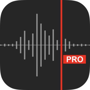 Awesome Voice Recorder X PRO image not available
