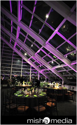 Adler-Planetarium-Chicago-Wedding-Lighting
