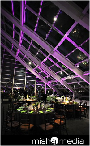 Adler-Planetarium-Chicago-Wedding-Lighting