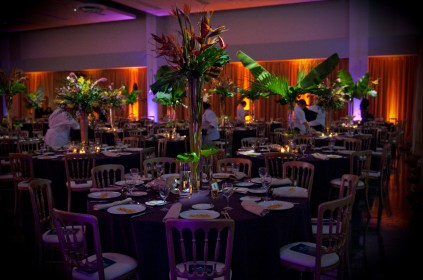 Drape and Lighting at 399 Banquets for Chicago Latino Caucus 1