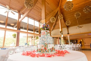 Grapevine Balls at Oak Brook Bath and Tennis Wedding Photo by Becky Brown