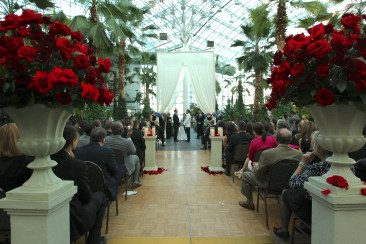 Wedding Ceremony and Crystal Gardens
