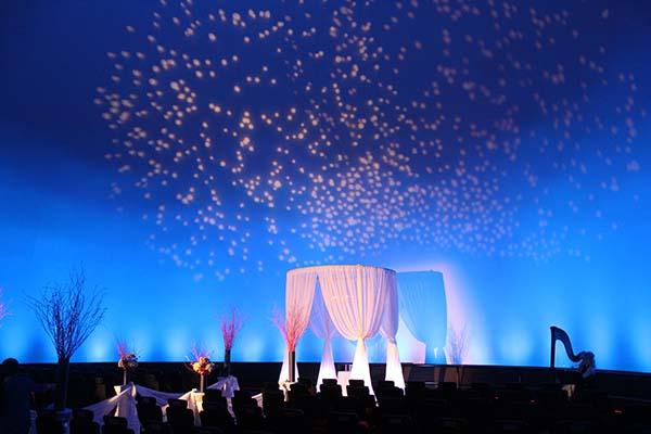 MDM Wedding Drape 2014 - 7