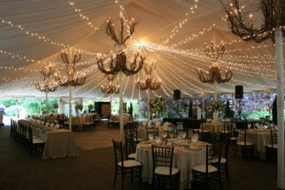 Twinkle Canopy at Galleria Marchetti Wedding