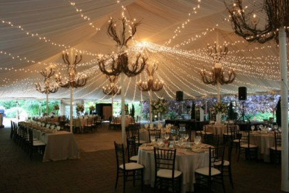 Twinkle Canopy at Galleria Marchetti Wedding