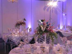 Centerpiece Spot Lighting at Palos Hills Country Club