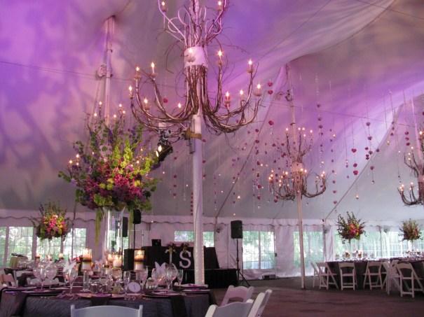 Purple Lighting at Galleria Marchetti