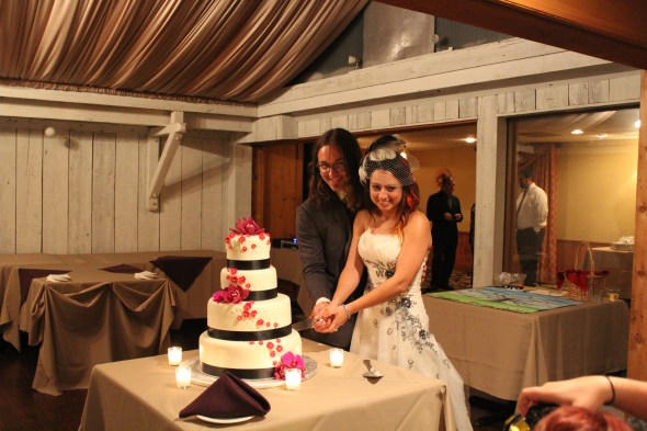 Cake cutting at the Season's of Long Grove Wedding