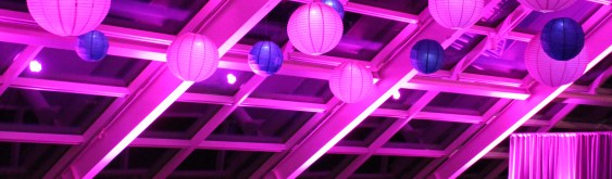 Fuchsia and Purple Lighting at Adler Planetarium