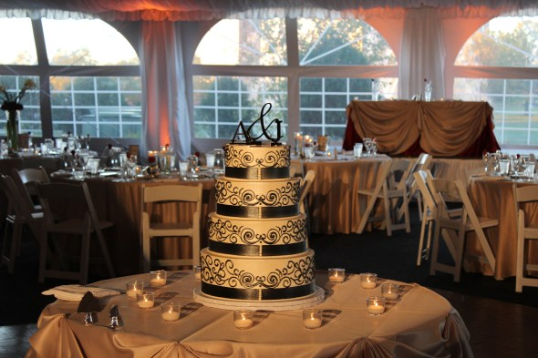 Spot light cake at Westin Itasca Wedding