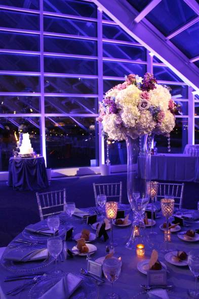 Wedding Lighting Pin Spot