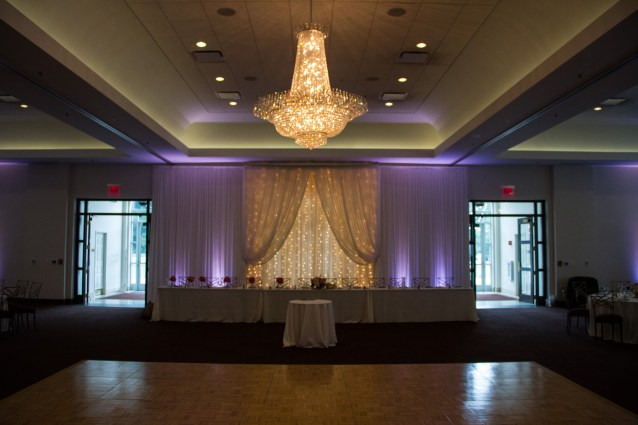 Twinkle Backdrop and Uplights at a Wedding