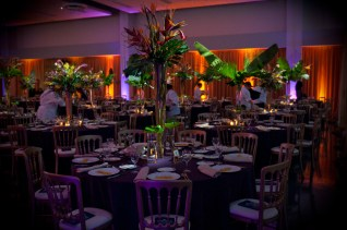 Drape and Lighting for Latino Caucus Gala at 399 Banquets