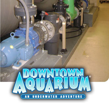 Genesys Pumps Downtown Aquarium installation