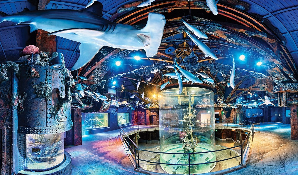 MDM Pumps Wonders of Wildlife Museum shipwreck installation