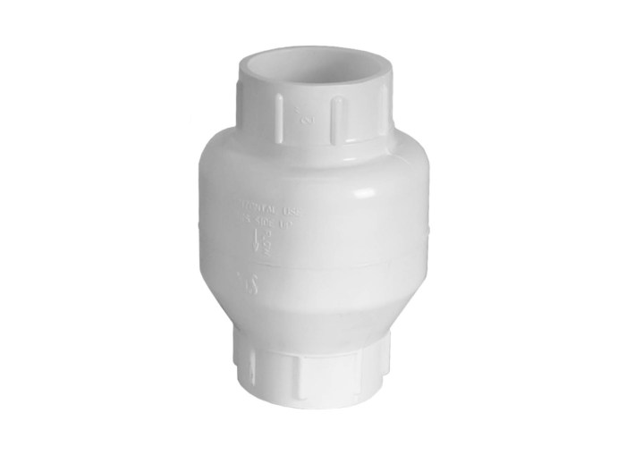 2 inch Check Valve upright view