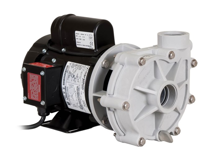 Sequence 1000 Pump with black Marathon Motor left angle view
